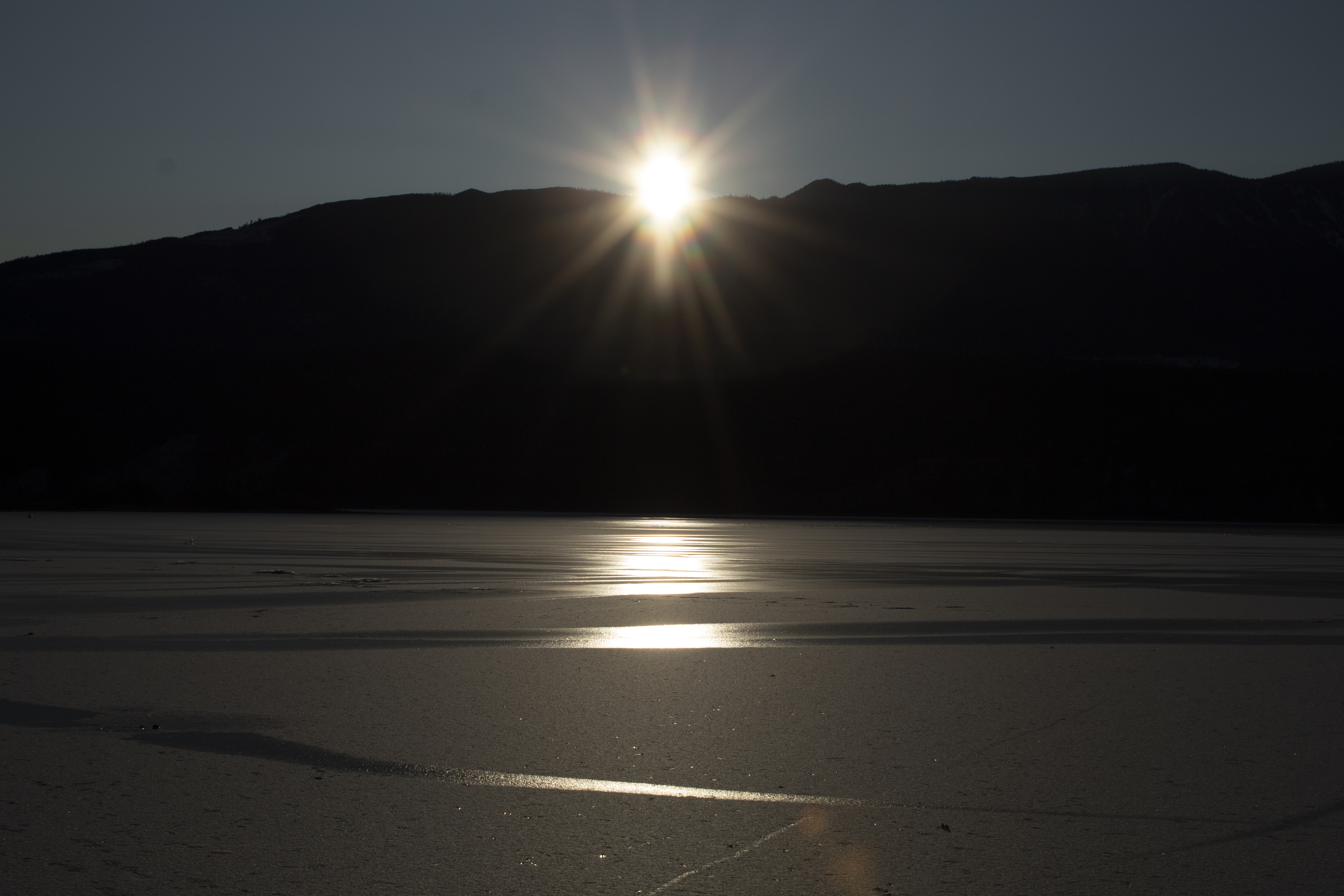 sunsetangel_montane